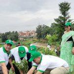 उन्नाइसौँ स्थापना दिवसको अवसरमा वृक्षरोपण