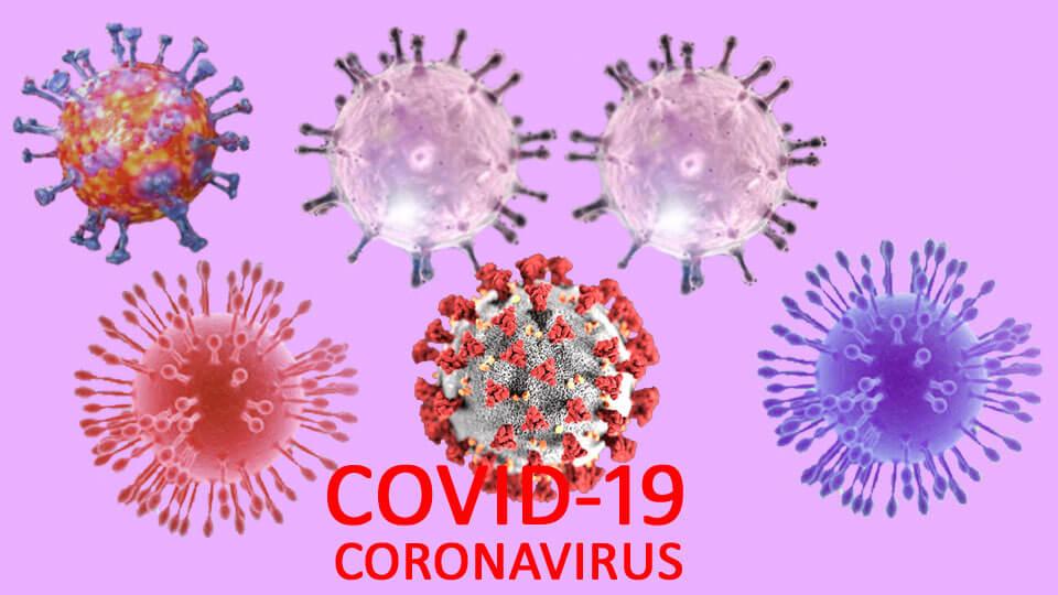 covid-19, coronavirus - The Times Of Nepal